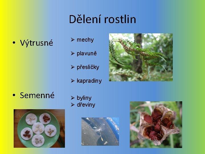 Dělení rostlin • Výtrusné Ø mechy Ø plavuně Ø přesličky Ø kapradiny • Semenné