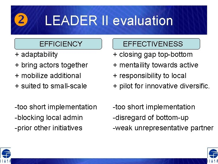 LEADER II evaluation EFFICIENCY + adaptability + bring actors together + mobilize additional