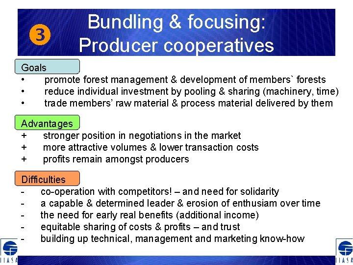 Bundling & focusing: Producer cooperatives Goals • promote forest management & development of