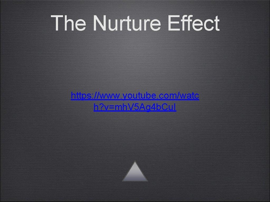 The Nurture Effect https: //www. youtube. com/watc h? v=mh. V 5 Ag 4 b.