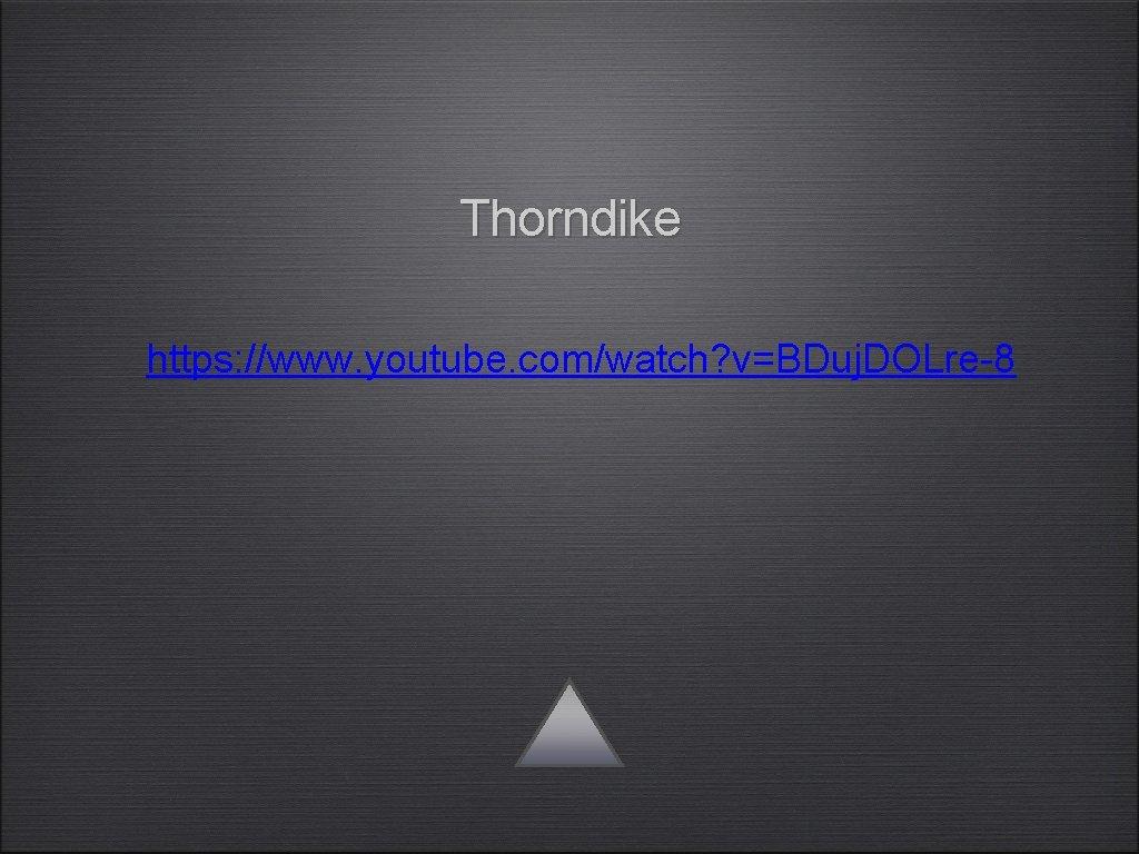 Thorndike https: //www. youtube. com/watch? v=BDuj. DOLre-8