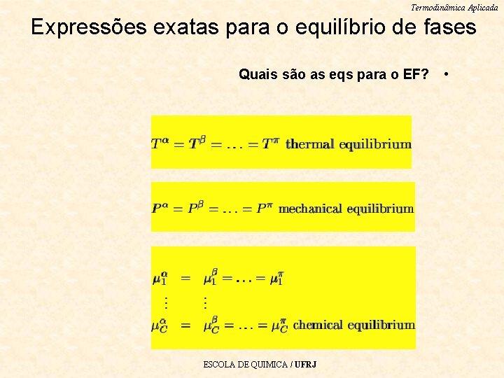 Termodinâmica Aplicada Expressões exatas para o equilíbrio de fases Quais são as eqs para