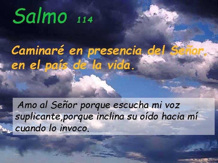 Salmo 114 Caminaré en presencia del Señor, en el país de la vida. Amo