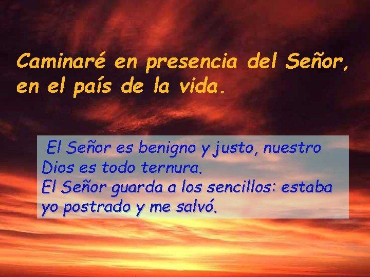 Caminaré en presencia del Señor, en el país de la vida. El Señor es