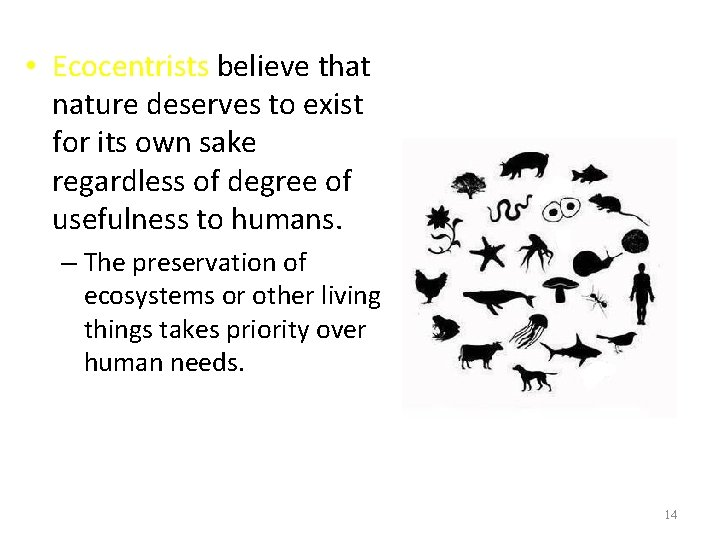 • Ecocentrists believe that nature deserves to exist for its own sake regardless
