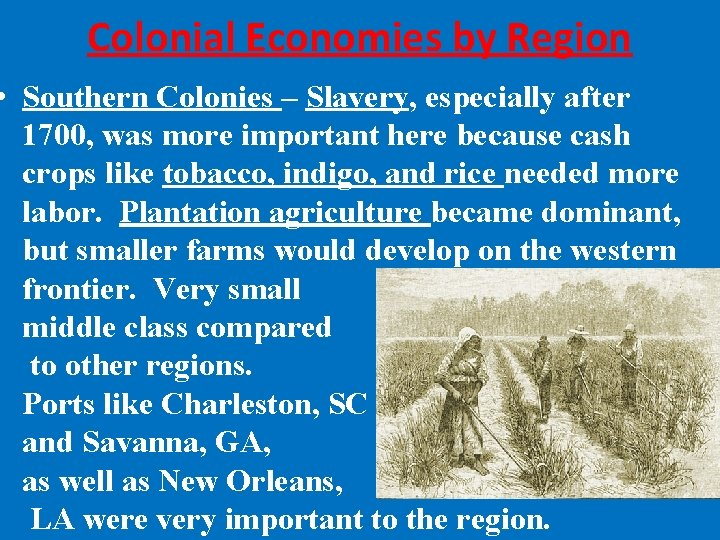 Colonial Economies by Region • Southern Colonies – Slavery, especially after 1700, was more