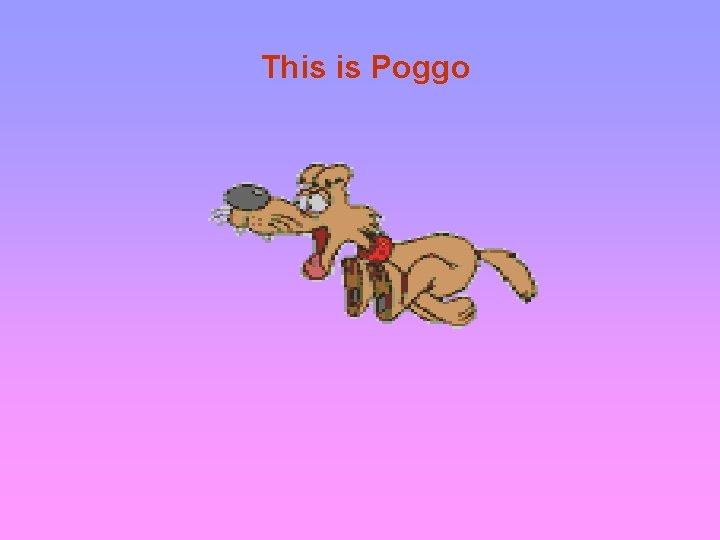 This is Poggo