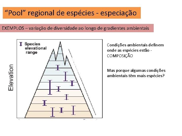 """""""Pool"""" regional de espécies - especiação EXEMPLOS – variação de diversidade ao longo de"""