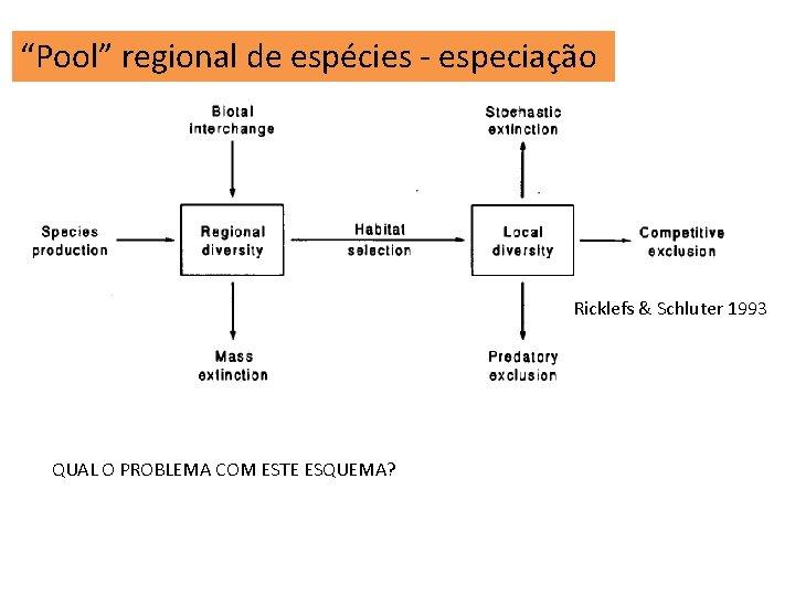 """""""Pool"""" regional de espécies - especiação Ricklefs & Schluter 1993 QUAL O PROBLEMA COM"""