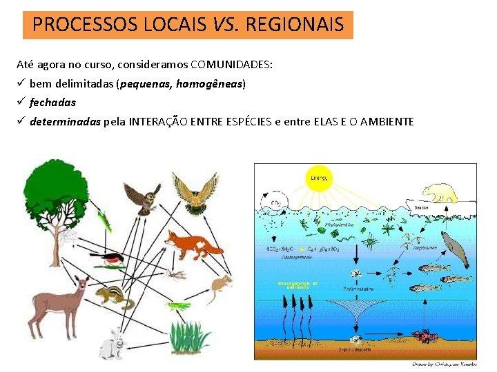 PROCESSOS LOCAIS VS. REGIONAIS Até agora no curso, consideramos COMUNIDADES: ü bem delimitadas (pequenas,