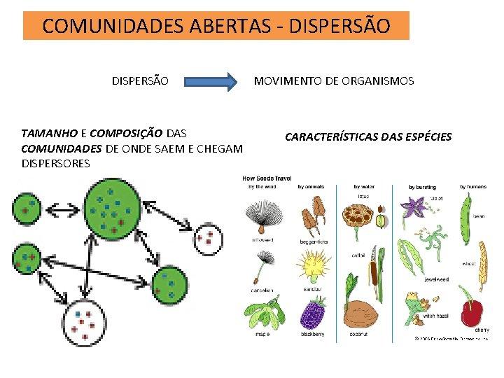 COMUNIDADES ABERTAS - DISPERSÃO TAMANHO E COMPOSIÇÃO DAS COMUNIDADES DE ONDE SAEM E CHEGAM