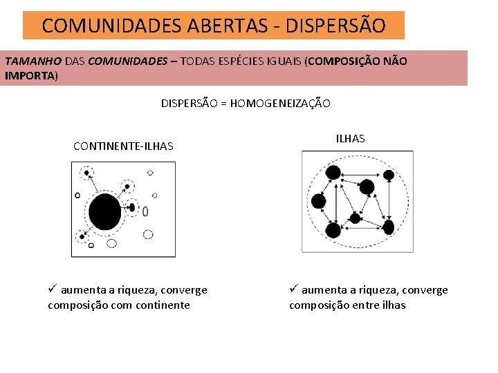 COMUNIDADES ABERTAS - DISPERSÃO TAMANHO DAS COMUNIDADES – TODAS ESPÉCIES IGUAIS (COMPOSIÇÃO NÃO IMPORTA)