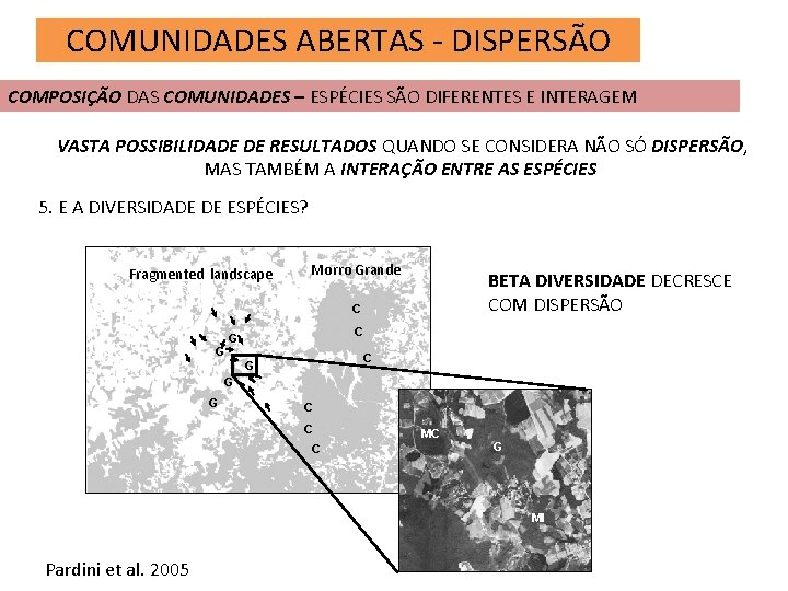 COMUNIDADES ABERTAS - DISPERSÃO COMPOSIÇÃO DAS COMUNIDADES – ESPÉCIES SÃO DIFERENTES E INTERAGEM VASTA