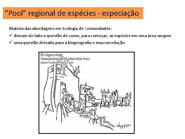 """""""Pool"""" regional de espécies - especiação Maioria das abordagens em Ecologia de Comunidades: ü"""