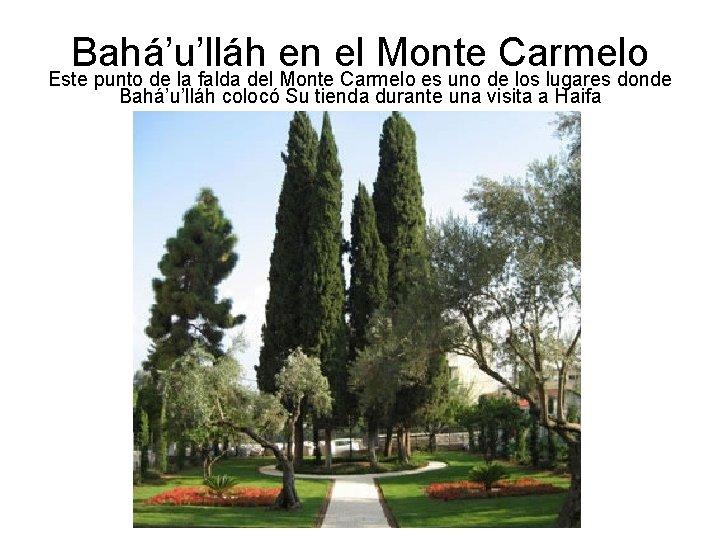 Bahá'u'lláh en el Monte Carmelo Este punto de la falda del Monte Carmelo es