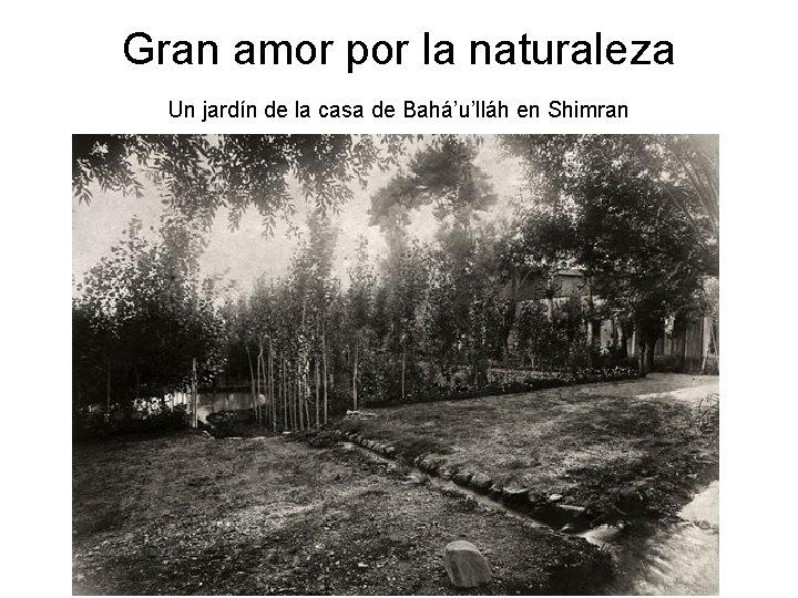 Gran amor por la naturaleza Un jardín de la casa de Bahá'u'lláh en Shimran