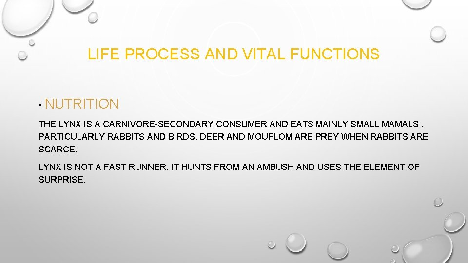 LIFE PROCESS AND VITAL FUNCTIONS • NUTRITION THE LYNX IS A CARNIVORE-SECONDARY CONSUMER AND