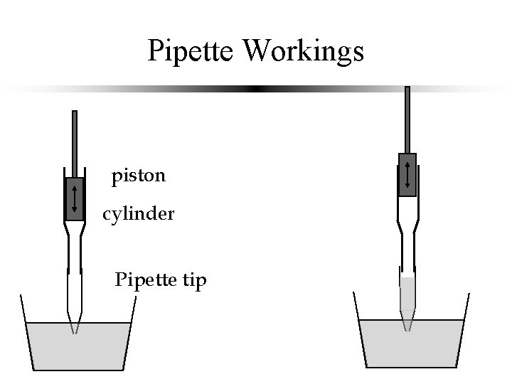 Pipette Workings piston cylinder Pipette tip