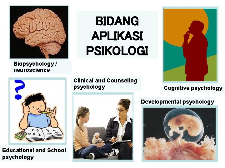 BIDANG APLIKASI PSIKOLOGI Biopsychology / neuroscience Clinical and Counseling psychology Cognitive psychology Developmental psychology