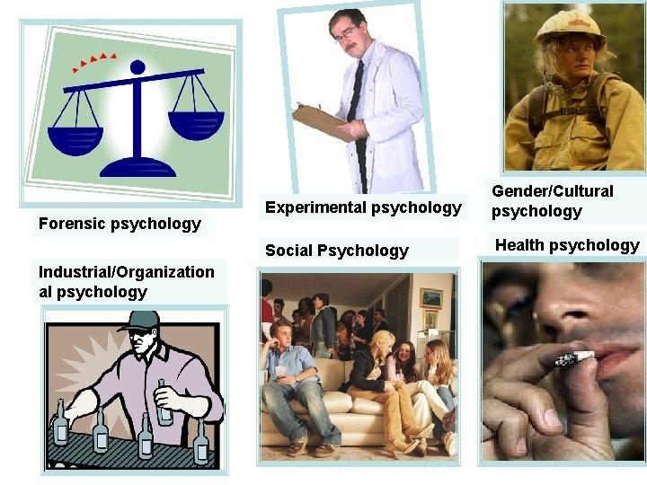 Forensic psychology Industrial/Organization al psychology Experimental psychology Gender/Cultural psychology Social Psychology Health psychology