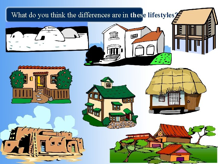 What do you think the differences are in these lifestyles? ? ?