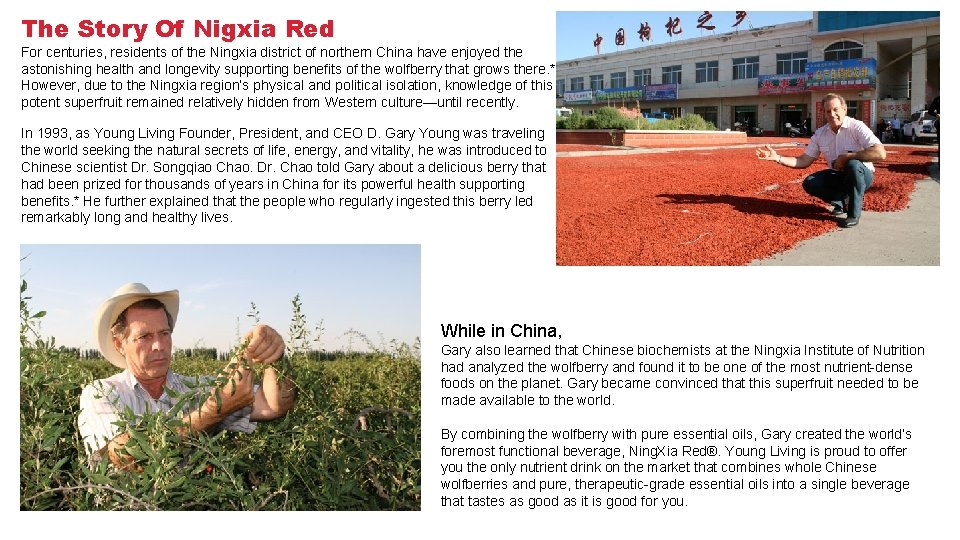 The Story Of Nigxia Red For centuries, residents of the Ningxia district of northern