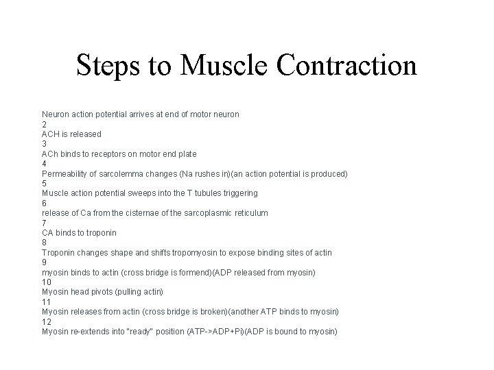 Steps to Muscle Contraction Neuron action potential arrives at end of motor neuron 2
