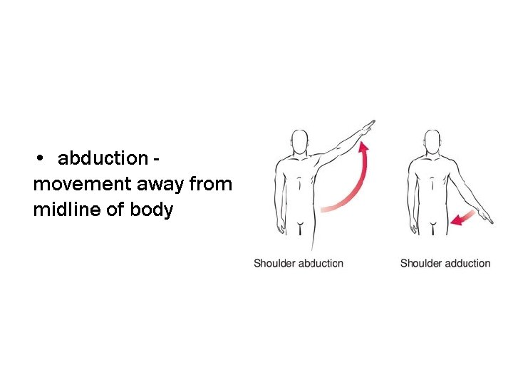 • abduction movement away from midline of body