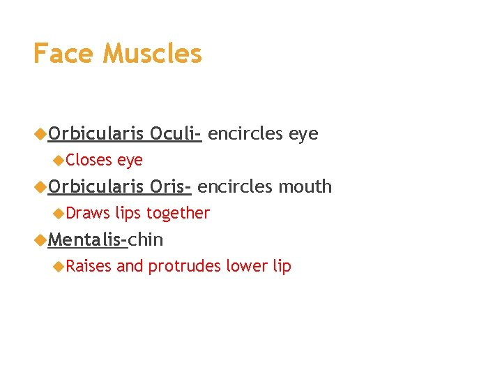 Face Muscles Orbicularis Closes eye Orbicularis Draws Oculi- encircles eye Oris- encircles mouth lips