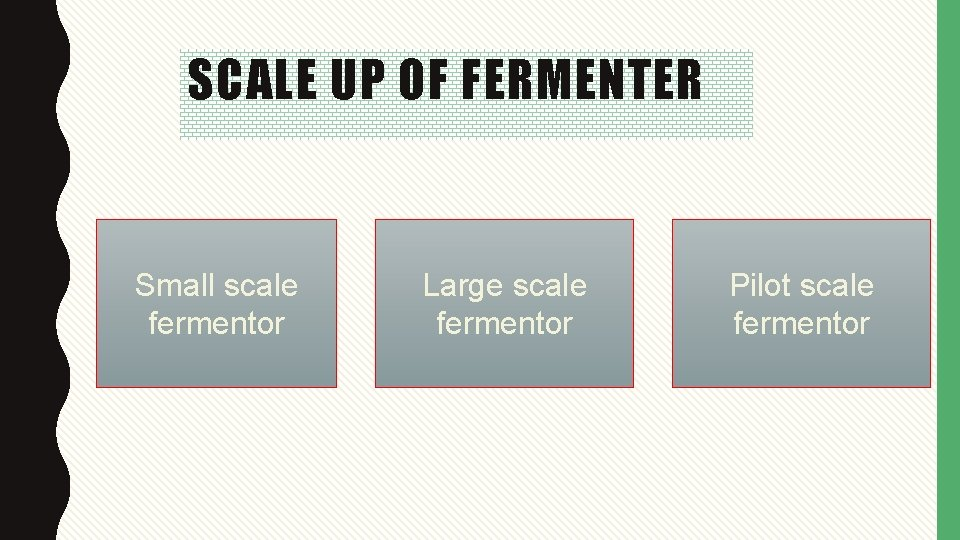 SCALE UP OF FERMENTER Small scale fermentor Large scale fermentor Pilot scale fermentor