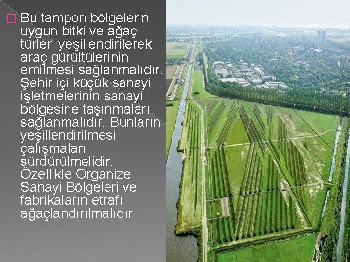 � Bu tampon bölgelerin uygun bitki ve ağaç türleri yeşillendirilerek araç gürültülerinin emilmesi sağlanmalıdır.