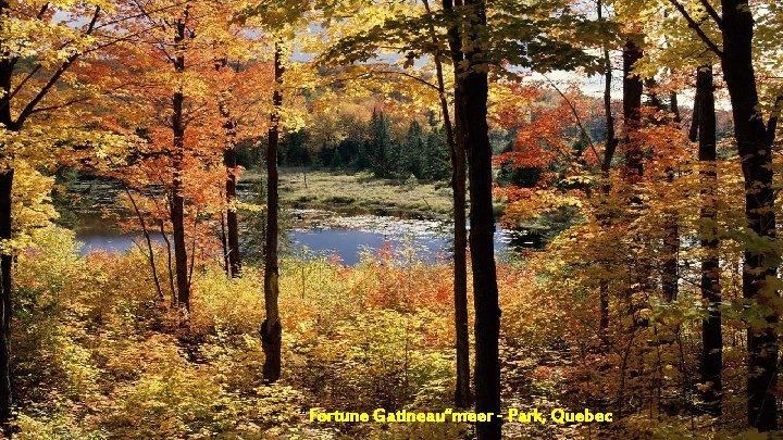 """""""Fortune Gatineau""""meer - Park, Quebec"""
