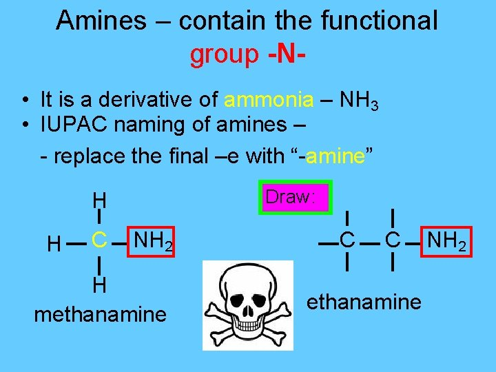 Amines – contain the functional group -N • It is a derivative of ammonia