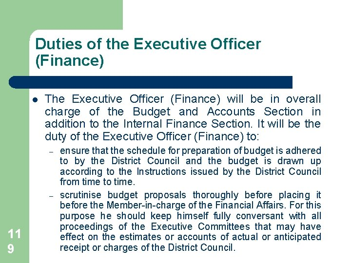 Duties of the Executive Officer (Finance) l The Executive Officer (Finance) will be in