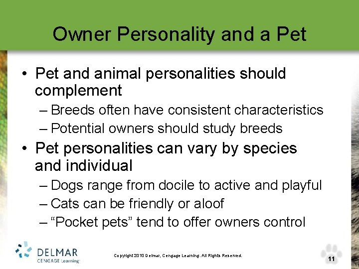 Owner Personality and a Pet • Pet and animal personalities should complement – Breeds