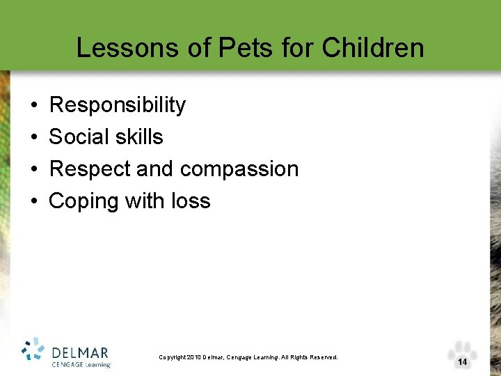 Lessons of Pets for Children • • Responsibility Social skills Respect and compassion Coping