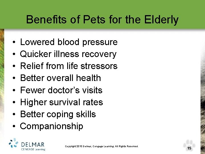 Benefits of Pets for the Elderly • • Lowered blood pressure Quicker illness recovery