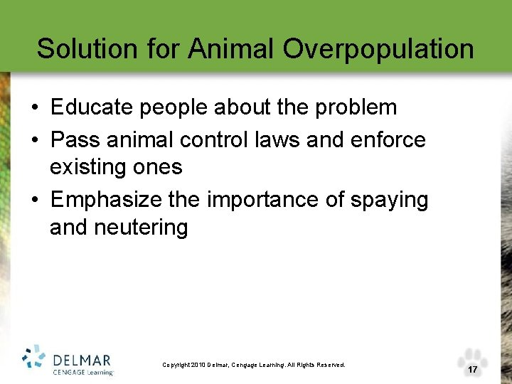 Solution for Animal Overpopulation • Educate people about the problem • Pass animal control