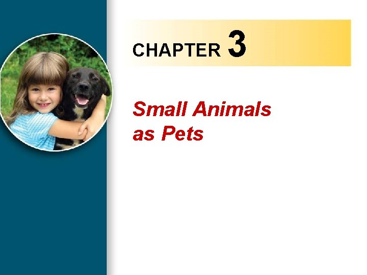 CHAPTER 3 Small Animals as Pets Copyright 2010 Delmar, Cengage Learning. All Rights Reserved.