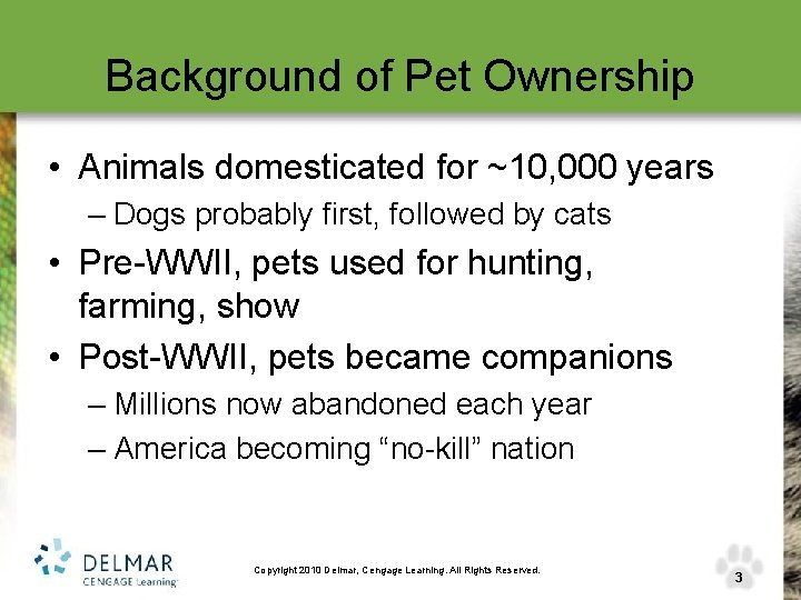 Background of Pet Ownership • Animals domesticated for ~10, 000 years – Dogs probably