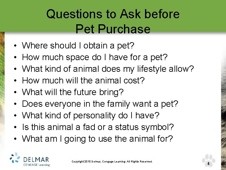 Questions to Ask before Pet Purchase • • • Where should I obtain a