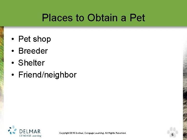 Places to Obtain a Pet • • Pet shop Breeder Shelter Friend/neighbor Copyright 2010