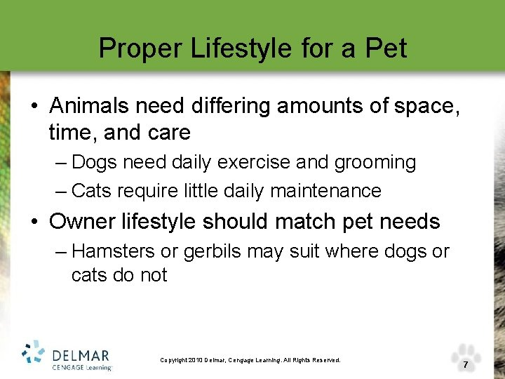 Proper Lifestyle for a Pet • Animals need differing amounts of space, time, and