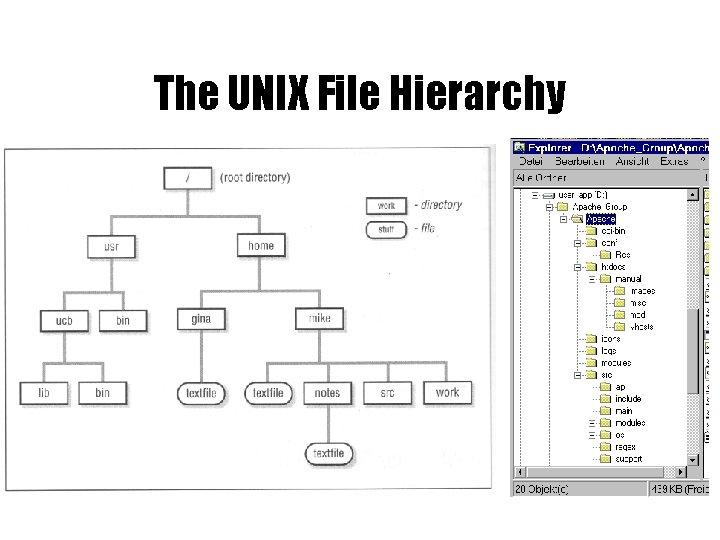 The UNIX File Hierarchy