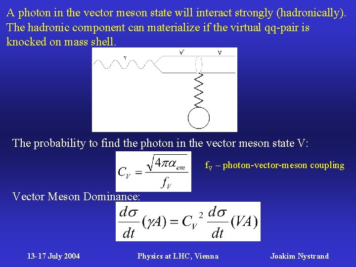 A photon in the vector meson state will interact strongly (hadronically). The hadronic component