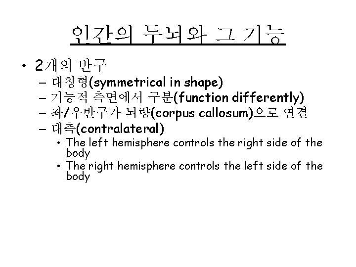 인간의 두뇌와 그 기능 • 2개의 반구 – 대칭형(symmetrical in shape) – 기능적 측면에서