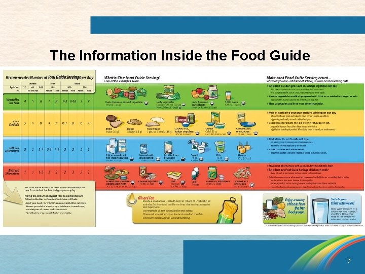 The Information Inside the Food Guide 7