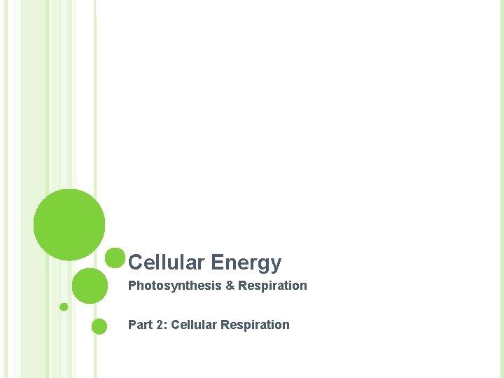 Cellular Energy Photosynthesis & Respiration Part 2: Cellular Respiration