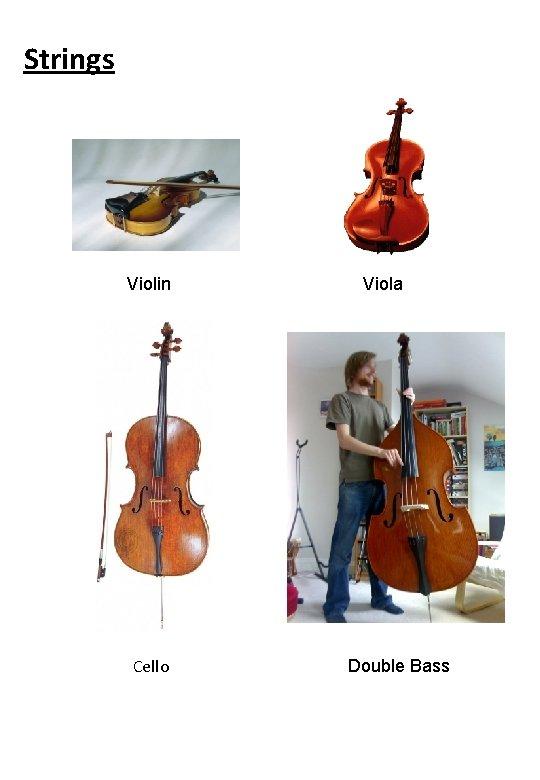 Strings Violin Cello Viola Double Bass