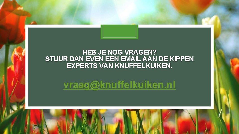 HEB JE NOG VRAGEN? STUUR DAN EVEN EMAIL AAN DE KIPPEN EXPERTS VAN KNUFFELKUIKEN.